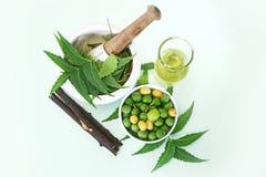 Indiano Ayurvedic Neem & olio, indiano Ayurvedic Immagini Stock Libere da Diritti