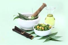 Indiano Ayurvedic Neem & olio, indiano Ayurvedic Immagine Stock Libera da Diritti