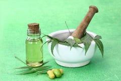 Indiano Ayurvedic Neem & olio, indiano Ayurvedic Fotografie Stock