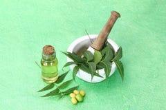 Indiano Ayurvedic Neem & olio, indiano Ayurvedic Fotografia Stock Libera da Diritti