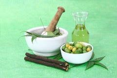 Indiano Ayurvedic Neem & olio, indiano Ayurvedic Immagini Stock