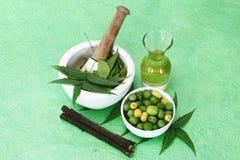 Indiano Ayurvedic Neem & olio, indiano Ayurvedic Fotografia Stock