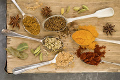 Indiano che cucina le spezie sui cucchiai Fotografie Stock Libere da Diritti