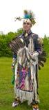 Indiano decorato Fotografie Stock Libere da Diritti