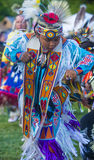 Indiano nativo Imagens de Stock Royalty Free