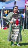 Indiano nativo Fotos de Stock Royalty Free