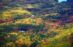 Indiansommar Acadia parkerar, Maine Royaltyfria Bilder