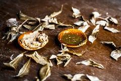 Indica Azadirachta, eller indisk lila eller ansiktsmask för sidor för NEEM-TRÄD med vitlökolja- och citronskivan Arkivfoton