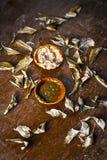 Indica Azadirachta, eller indisk lila eller ansiktsmask för sidor för NEEM-TRÄD med vitlökolja- och citronskivan Royaltyfria Foton