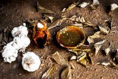 Indica Azadirachta, eller indisk lila eller ansiktsmask för sidor för NEEM-TRÄD med vitlökolja- och citronskivan Fotografering för Bildbyråer