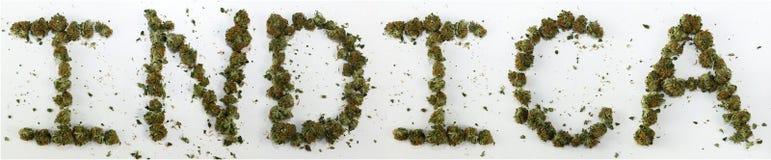 Indica buchstabiert mit Marihuana Lizenzfreies Stockbild