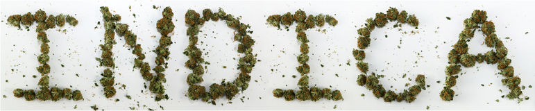 Indica Spelled With Marijuana. The word Indica spelled out with real marijuana royalty free stock image