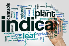 Indica word cloud. Concept on grey background Stock Photos