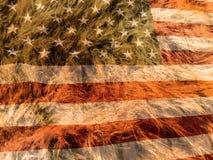 Indicador americano Fotos de archivo libres de regalías