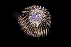 Indicador bonito dos fogos-de-artifício imagem de stock royalty free