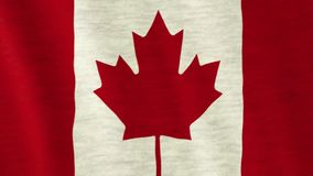Indicador canadiense almacen de video