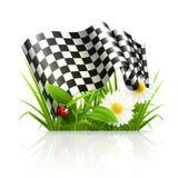 Indicador Checkered en hierba Fotos de archivo libres de regalías