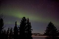 Indicador de Borealis da Aurora (luzes do norte) Fotos de Stock Royalty Free