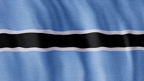 Indicador de Botswana almacen de video