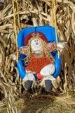 Indicador de Halloween Imagens de Stock Royalty Free
