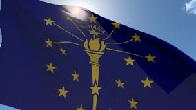 Indicador de Indiana que agita en el viento almacen de video