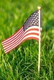 Indicador de los Estados Unidos Fondo de la hierba verde E fotografía de archivo libre de regalías