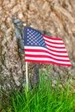 Indicador de los Estados Unidos Fondo de la hierba verde E imágenes de archivo libres de regalías