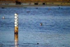 Indicador de profundidade da água fotografia de stock