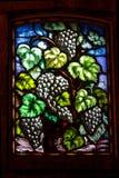 Indicador de vidro de uvas para vinho Imagens de Stock Royalty Free