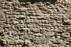 Indicador decorativo de um tenement histórico Coberto de vegetação velho da parede de pedra com as plantas verdes Fotos de Stock Royalty Free
