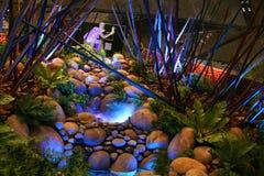 Indicador do festival 2008 do jardim de Singapore Imagens de Stock