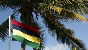 Indicador que agita de Isla Mauricio almacen de metraje de vídeo