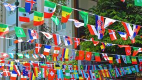 Indicadores del mundo Símbolos nacionales almacen de video