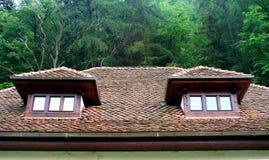 Janelas do telhado Imagem de Stock Royalty Free