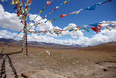 Indicadores tibetanos imágenes de archivo libres de regalías