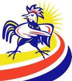 Indicare arrabbiato del gallo Immagine Stock