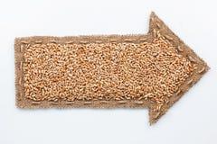 Indicateur avec des grains de blé Photographie stock