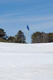 Indicateur de golf dans la neige Photographie stock libre de droits