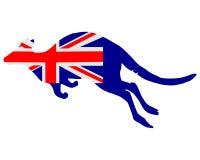 Indicateur de l'Australie avec le kangourou illustration de vecteur