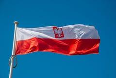 Indicateur de la Pologne photographie stock