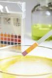 Indicateur de pH Photographie stock libre de droits