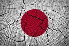 Indicateur du Japon Images stock