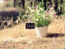 Indicateur en bois avec l'amour d'inscription Photographie stock libre de droits