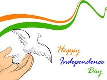 Indicateur national indien avec des pigeons de vol. illustration stock