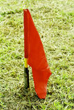 Indicateur rouge Photographie stock