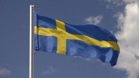 indicateur Suède 4K banque de vidéos