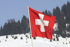 Indicateur suisse Image stock