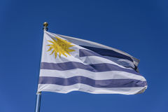 indicateur Uruguay Image stock