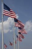 Indicateurs américains autour du mémorial de Washington Image libre de droits