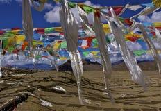 Indicateurs de prière au Thibet photo stock